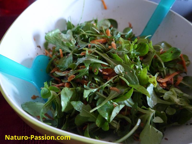 Salade composée_Naturo-Passion