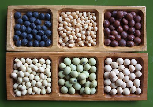 Soja variétés