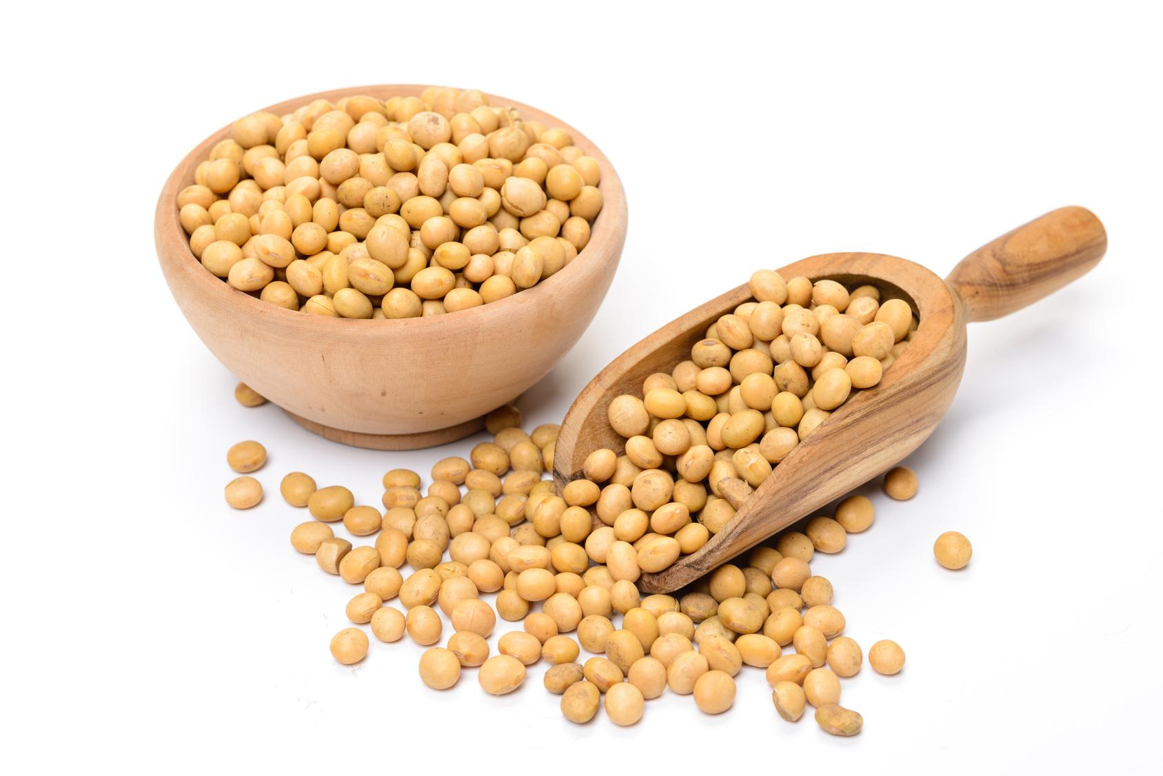 Graines de soja