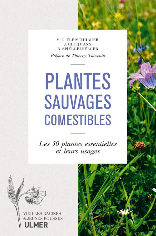 Plantes sauvages comestibles ULMER